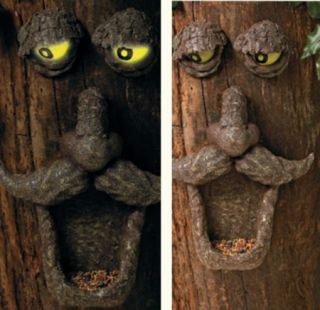 Glow in Dark Eyes Tree Face Garden Yard Bird Feeder New Forest