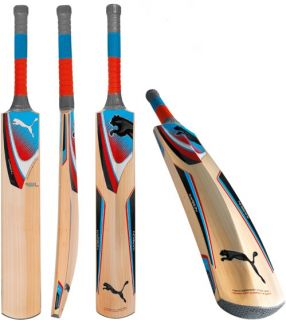 Cup 2012 English Willow Cricket Bat Full Stickers Limited Stock