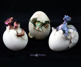 Gorgeous Colourful Baby Dragons Hatching from Eggs Set of 3