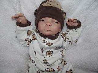 Gorgeous Preemie Baby Boy Harper Jacob So Adorable Lifelike Reborn