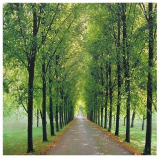Furniture Path of Life Canvas Wall Art   19.75 x 19.75
