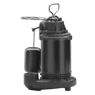 Wayne Water Systems 1/3 HP Vertical Float Switch cast iron Sump Pump