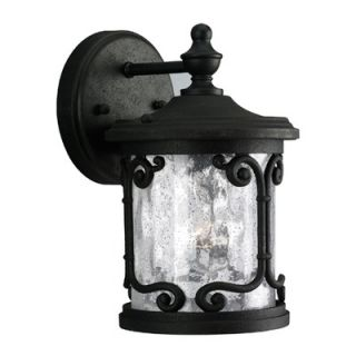 Progress Lighting Augusta Outdoor Wall Lantern in Forged Black