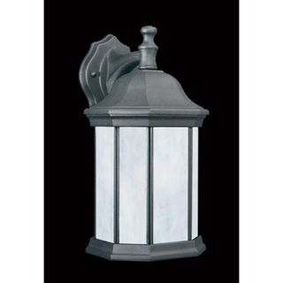 Thomas Lighting Hawthorne Outdoor Wall Lantern in Matte Black   Energy