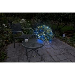 Mr. Light 200 LED Solar Net Lights with Green Wire in Blue and White