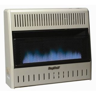 30000 BTU Dual Fuel Blue Flame Wall Heater