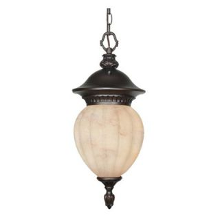Nuvo Lighting Balun Energy Star Hanging Lantern in Chestnut Bronze