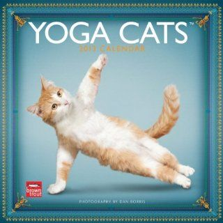 Yoga Cats 2013 Square 12X12 Wall Calendar (Multilingual Edition