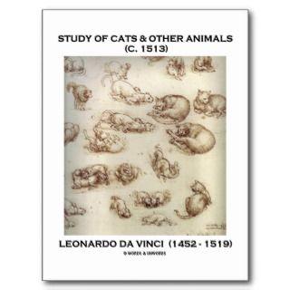 Study Of Cats & Other Animals (Leonardo da Vinci) Post Cards