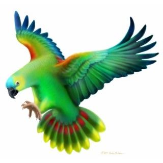 Blue Front  Parrot Holiday Ornament Photo Cutout