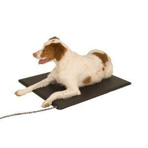 Pets Heat Mat Warming Heater Heating Pad w Thermostat Dog Indoor