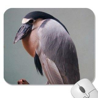 Bronx Zoo 127 bird 2a Mouse Pad