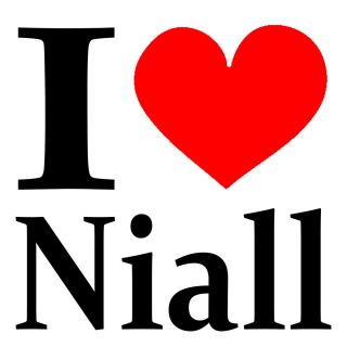 New Screen Printed Tshirt I Heart Niall Horan One Direction s 3XL Free