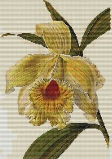 Counted Cross Stitch Pattern 880 Flowers Floral Nature Chart