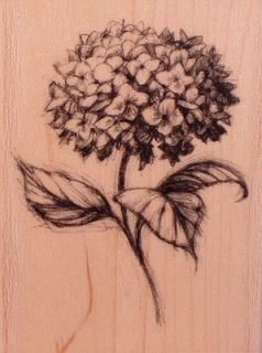 97151 Hydrangea Wood Mounted Inkadinkado Rubber Stamp Flower Pencil