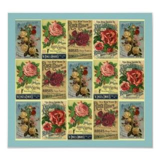 VINTAGE Rose Company Guides for growing Roses designed into a Garden
