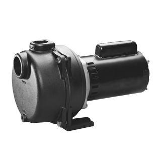 Wayne 1 1 2 HP Lawn Sprinkler Irrigation Pump WLS150