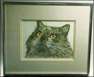 and Framed Signed Limited Edition Print of Cat by Jack Seery