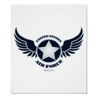 United States Air Force (USAF) Wings