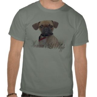 Perfect Angel Pugs T Shirt