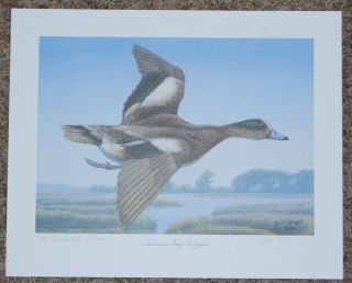 Ducks Unlimited Jeni Knight Jamaica Bay Wigeon Signed Numbered
