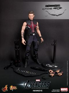 Marvel The Avengers Hawkeye Jeremy Renner 1 6th Scale 12 Action Figure