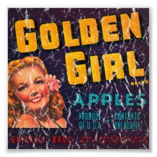 Golden Girl Apples  disressed Poser from Zazzle