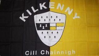Kilkenny County Ireland Irish Flag 3x5 Historical Banner CILL