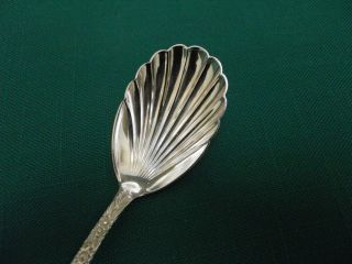 Kirk Son Sterling Silver Repousse Sugar Shell Spoon