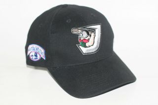 Diamond Jaxx Minor League Baseball Team Adjustable Hat ABC Cap