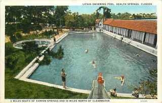 FL Health Springs Lithia Swimming Pool Slide R81825