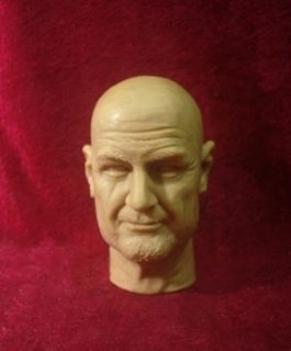 Custom Made John Locke from Lost 1 6 Action Figure Head Fit Hot Toys