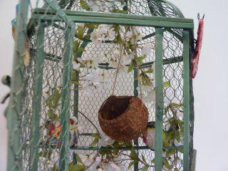 REAL COCONUT LOVEBIRD BIRD NEST CRADLE BIRDHOUSE *** CUSTOM HAND MADE