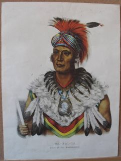 Vintage Fox Musquakees Indian Chief Wapella Color Print