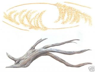 Sea Oats Driftwood Wall Transfer Art Decal Wall Decor