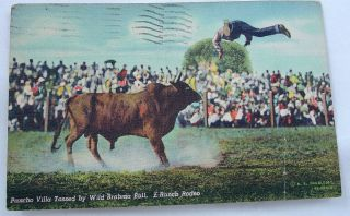 Pancho Villa and Wild Brahma Bull McAllen Texas TX vintage 1948 used