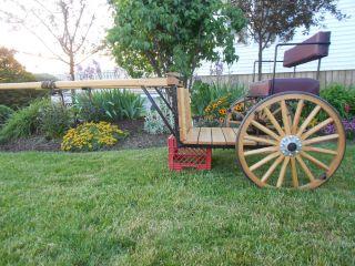 Miniature Mini Horse Wooden Cart