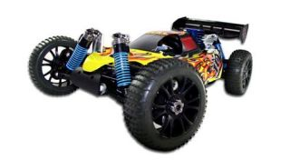 Redcat Racing Hurricane Radio Controlled Car