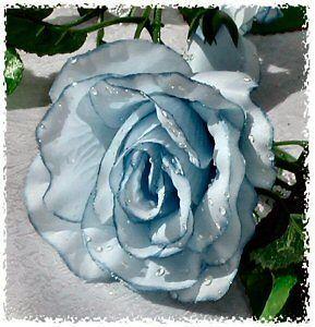 LIGHT BLUE Rose Garland ~ Silk Wedding Flowers Arch Gazebo Reception
