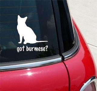 black cat sticker decal
