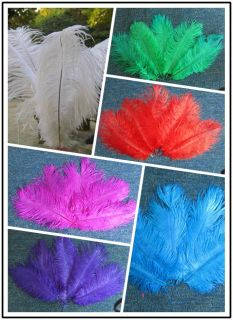 Wholesale,20 pcs 6 14inch High Quality Natural OSTRICH FEATHERS, Color
