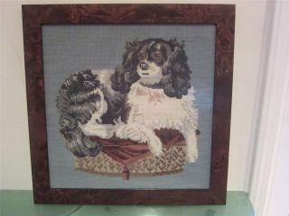 Elizabeth Bradley Tapestry needlepoint KING CHARLES Spaniel Dog Framed