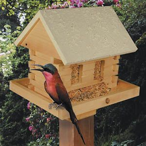 Log Cabin Bird Feeder Pattern Plan #1031 Sized at 19H x 17W x 14D