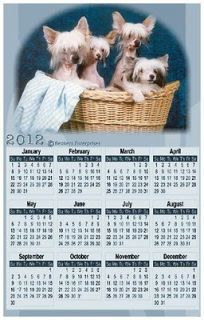 CHINESE CRESTED PUPPIES 2013 Magnetic Calendar Magnet #0606