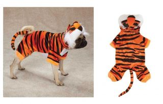 Bengal Buddy Tiger Costume for Dogs   Halloween Dog Costumes
