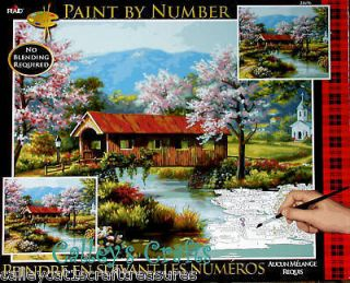 Plaid Paint by Number Kit ~ Covered Bridge ~16 x 20 Water, Flowers