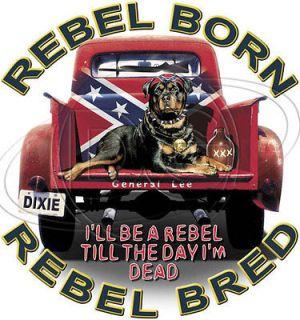 Dixie Shir Rebel Born Rebel Bred Pibull Huning General Lee Redneck