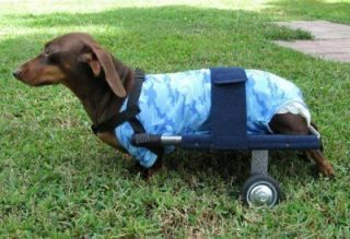 DOG CART WHEELCHAIR VETS, RESUES REHAPS BUY FROM US, DOXIE LHASA APSO