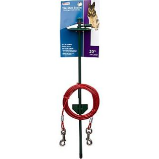 XX Large Tie Out Dome Stake with Cable