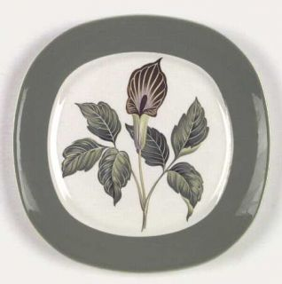 Taylor, Smith & T (TS&T) King ODell Dinner Plate, Fine China Dinnerware   Green